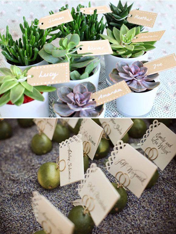 detalles invitados plantas
