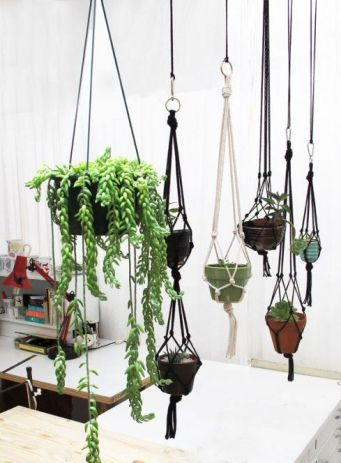 macrame plantas